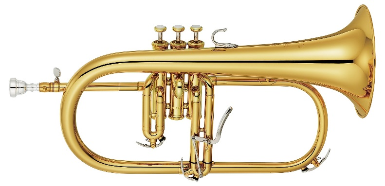 History and Types of Trumpets: trumpet instrument